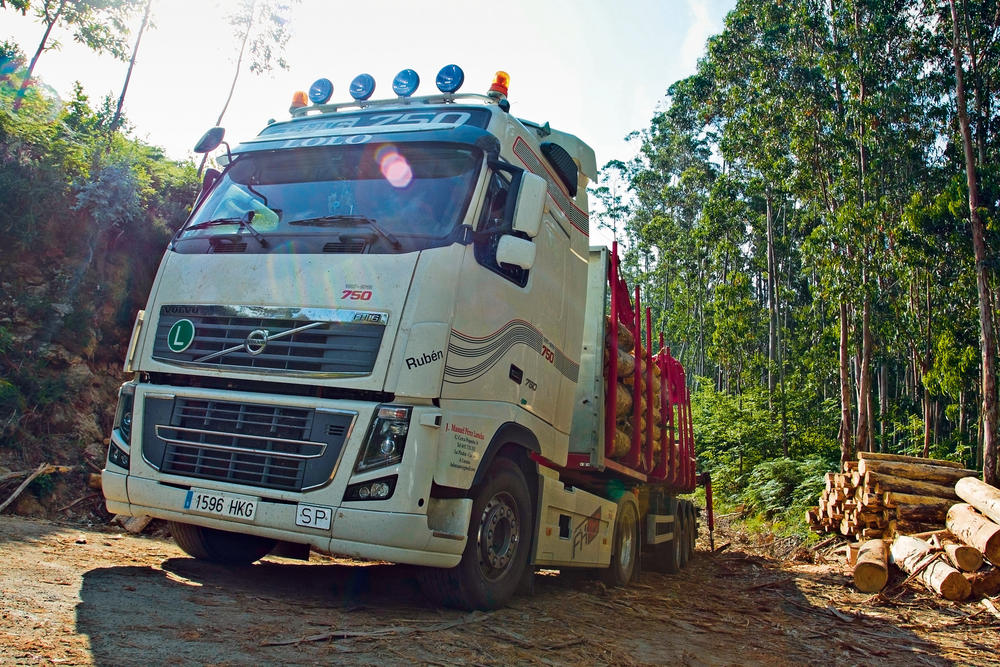 Transporte forestal con un Volvo FH 750CV