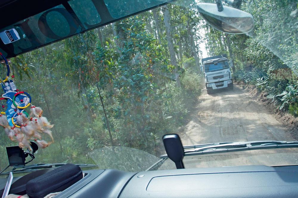 transporte forestal volvo fh16