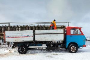 Transporte Lofoten