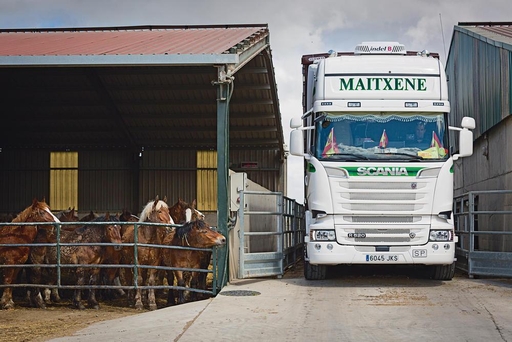 Transportes Maitxene