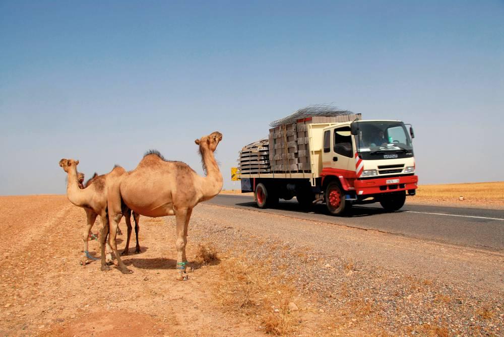 Transporte en el Atlas