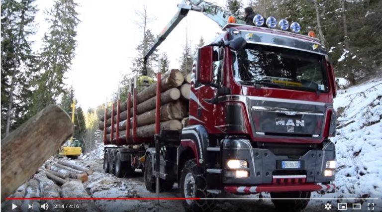 Transporte de madera en los Alpes italianos